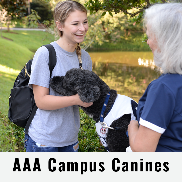 AAA Campus Canines