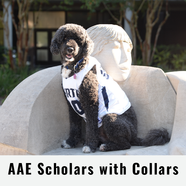AAE Scholars with Collars
